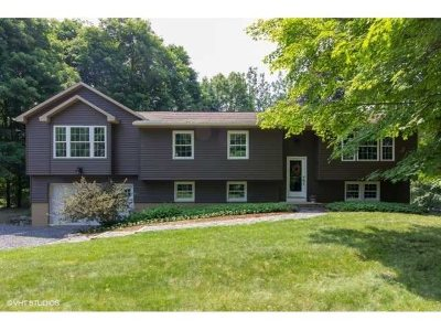 Hyde Park NY Single Family Home For Sale: $449,000