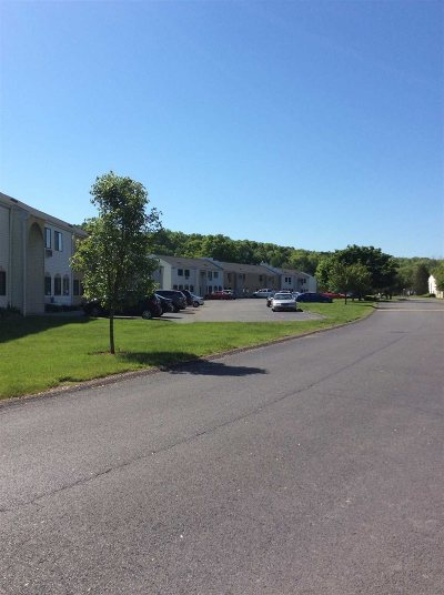 Wappinger Condo/Townhouse For Sale: 13 Carnaby #13C