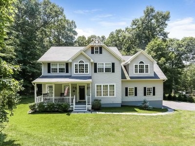 East Fishkill Single Family Home New: 93 Cranberry Dr