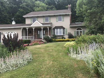 Fishkill Single Family Home For Sale: 548 Route 9d