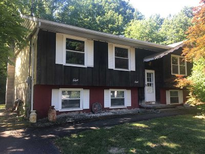 Esopus Single Family Home For Sale: 191 Quarry St