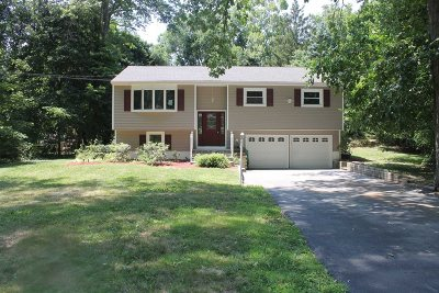 Wappinger Single Family Home New: 22 Cady Ln