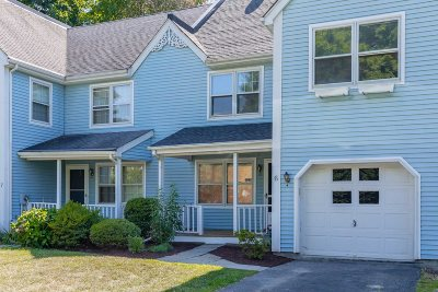 Hyde Park Condo/Townhouse For Sale: 6 Windsor Ct