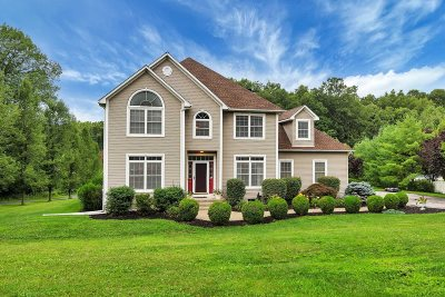East Fishkill Single Family Home For Sale: 28 Shadowood Dr