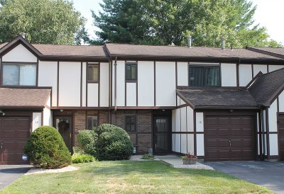 Dutchess County Condo/Townhouse For Sale: 10 Amber Ct