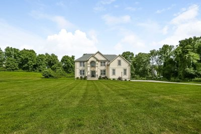 East Fishkill Single Family Home For Sale: 26 Lees Way