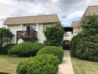 Fishkill Condo/Townhouse For Sale: 22 Village Park Drive #2E