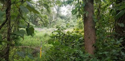 Poughkeepsie Twp Residential Lots & Land For Sale: Bower Rd