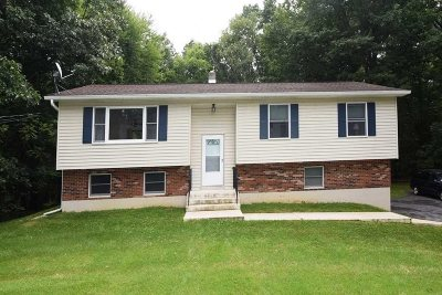 East Fishkill Single Family Home For Sale: 47 Wright Blvd