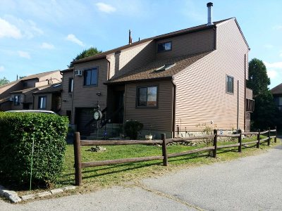 Fishkill Condo/Townhouse For Sale: 9 Walnut Ct