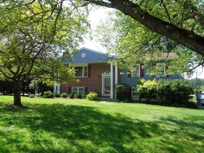 Wappinger Single Family Home Continue Showing: 2 Martin Drive