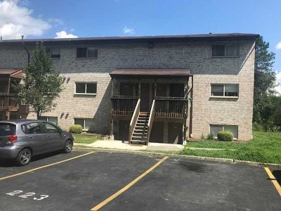 Poughkeepsie Twp Condo/Townhouse For Sale: 26 Cooper Rd #414