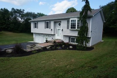 Poughkeepsie Twp Single Family Home For Sale: 14 Grady Hill Ct
