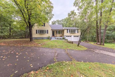 Rhinebeck Single Family Home For Sale: 349 Salisbury Tpk