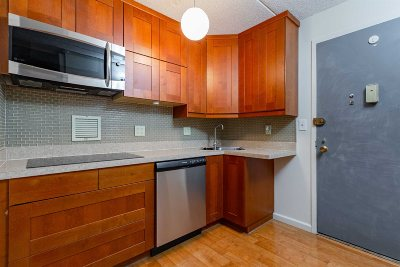 Poughkeepsie City Condo/Townhouse For Sale: 160 Academy St #2A