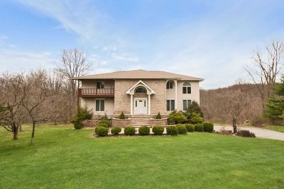 East Fishkill Single Family Home For Sale: 16 Darci Dr