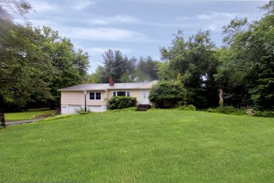 Single Family Home For Sale: 229 Maloney Rd