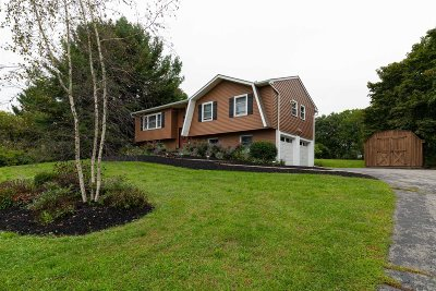 East Fishkill Single Family Home For Sale: 13 Wright Blvd