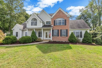 East Fishkill Single Family Home New: 15 Spring View Ln