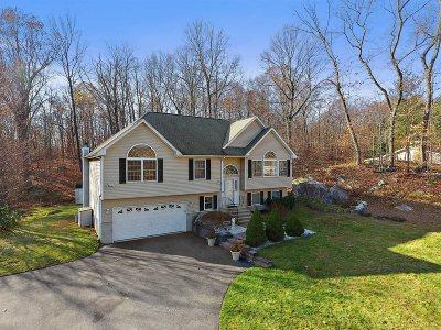 Putnam County Single Family Home For Sale: 3 Rick Lane