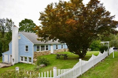Amenia Single Family Home For Sale: 328 Bog Hollow Rd