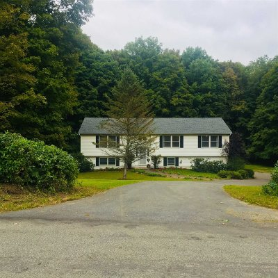 Amenia Single Family Home For Sale: 100 Cascade Road