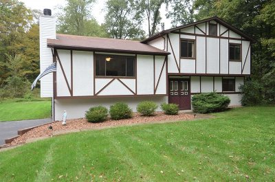East Fishkill Single Family Home For Sale: 17 Shadow Ln
