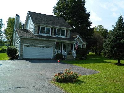 East Fishkill Single Family Home For Sale: 323 Cary Road