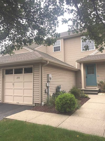 Fishkill Condo/Townhouse For Sale: 250 Crestwood Ct