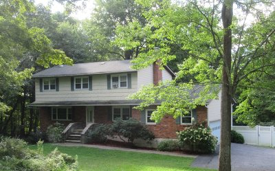 East Fishkill Single Family Home For Sale: 7 Sherwood Ln