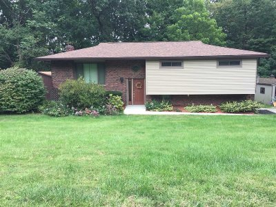Dutchess County Single Family Home For Sale: 47 Skyview Dr