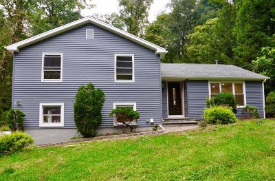 Beekman Single Family Home For Sale: 963 Beekman Rd