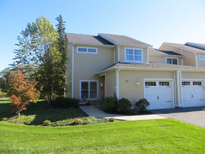Rhinebeck Condo/Townhouse For Sale: 301 Ivy Trail