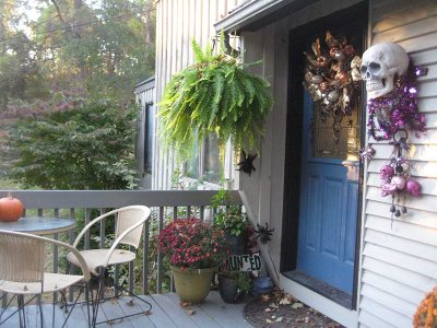 Rhinebeck Single Family Home For Sale: 11 Cove