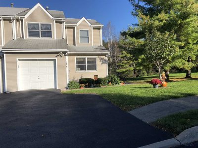 Fishkill Condo/Townhouse For Sale: 24 Deer Crossing