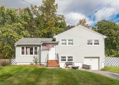 Poughkeepsie Twp Single Family Home For Sale: 31 Peacock Ln