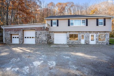 Putnam County Single Family Home For Sale: 1397 Route 52