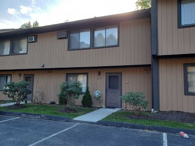 East Fishkill Condo/Townhouse For Sale: 704 Chelsea Cove