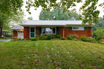 Single Family Home For Sale: 11 Ludlow Dr