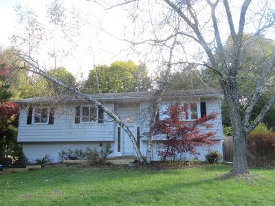 Wappinger Single Family Home For Sale: 5 Blackthorn Loop