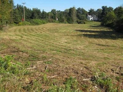 Residential Lots & Land For Sale: Route 55