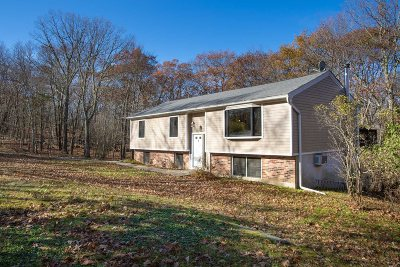 Putnam County Single Family Home For Sale: 278 E Mountain Rd S