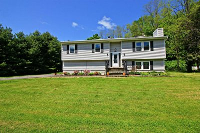 Beekman Single Family Home For Sale: 75 Pleasant Ridge Rd