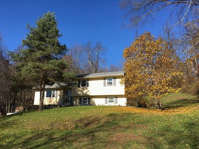 Poughkeepsie Twp Single Family Home For Sale: 207 Diddell Rd
