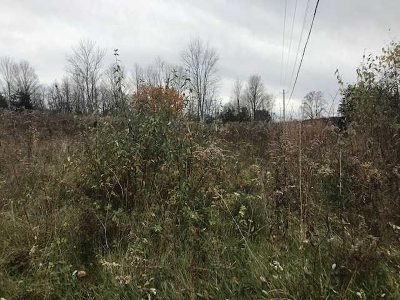 Beekman Residential Lots & Land For Sale: Clove Valley Rd