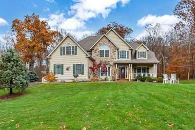 East Fishkill Single Family Home For Sale: 55 Marie Ct