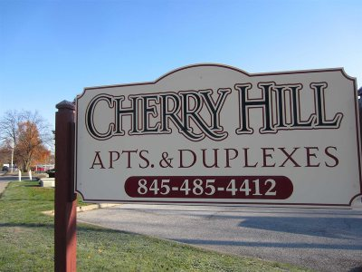 Poughkeepsie Twp Condo/Townhouse New: 1009 Cherry Hill Dr