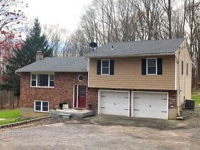 Putnam County Single Family Home For Sale: 20 Hanover Circle