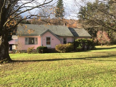 Amenia Single Family Home New: 3661 Route 22