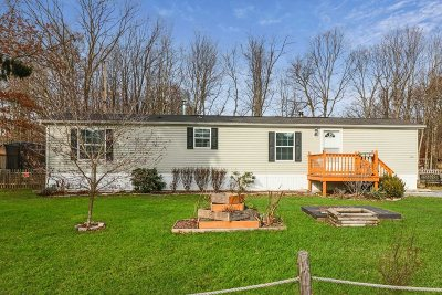 Dutchess County Single Family Home For Sale: 9 Oak Dr
